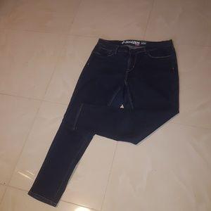 Denizen Skinny Curvy Jeans
